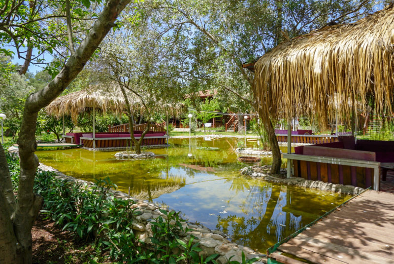 Vegan unterwegs in Olympos/Antalya/Türkei - The Vegan Lodge - Fotoreisebericht
